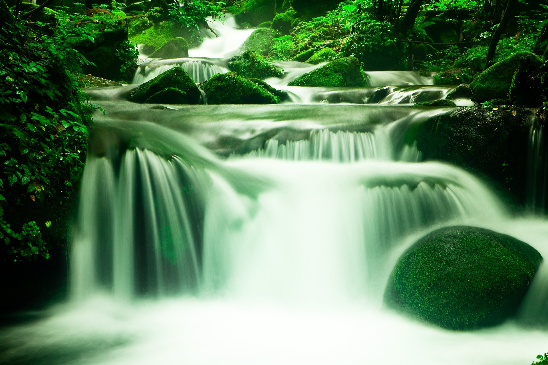 Life flows slowly at first after a miscarriage.
